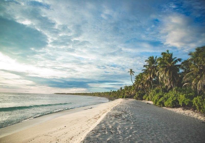 Maldives palm fringed beach under the sun