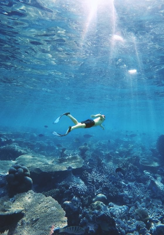Snorkelling in the Maldives over coral