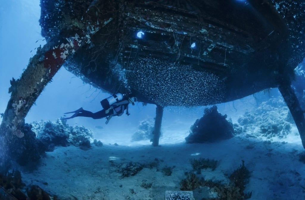 Sudan Seas 4 Life Diving Wrecks
