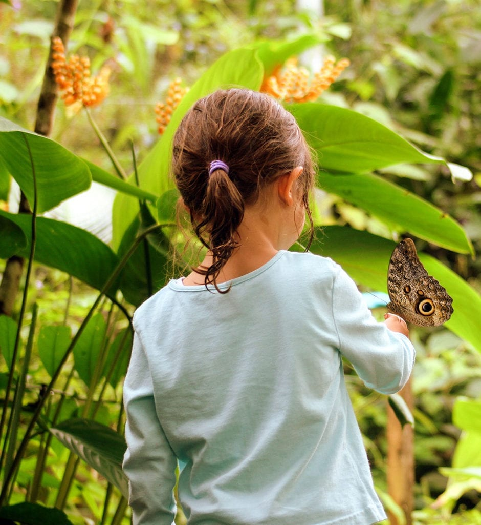 Child with a butterfly on a family wildlife holiday