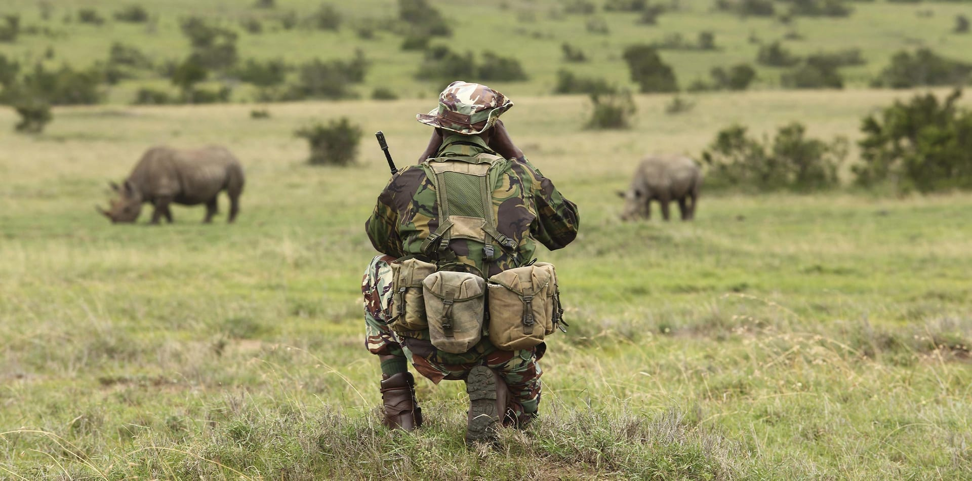kenya field ranger rhino