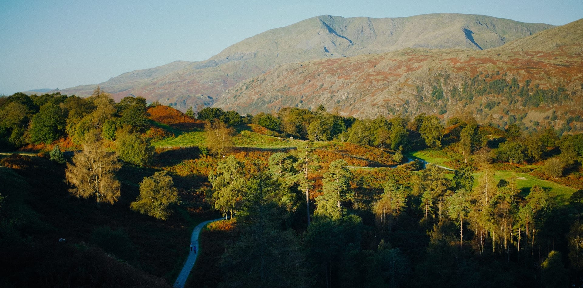 winding road through an autumn landscape in Wales, United Kingdom