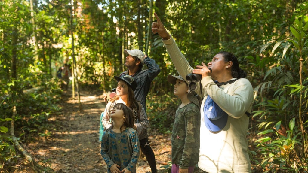 Children on a guided tour through the jungle on a family wildlife adventure