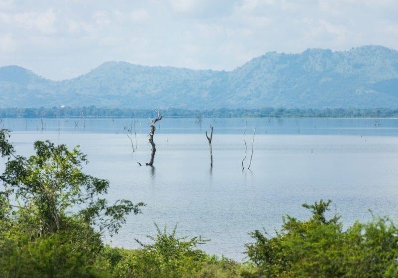 Lake in Udawalawe National Park in Sri Lanka