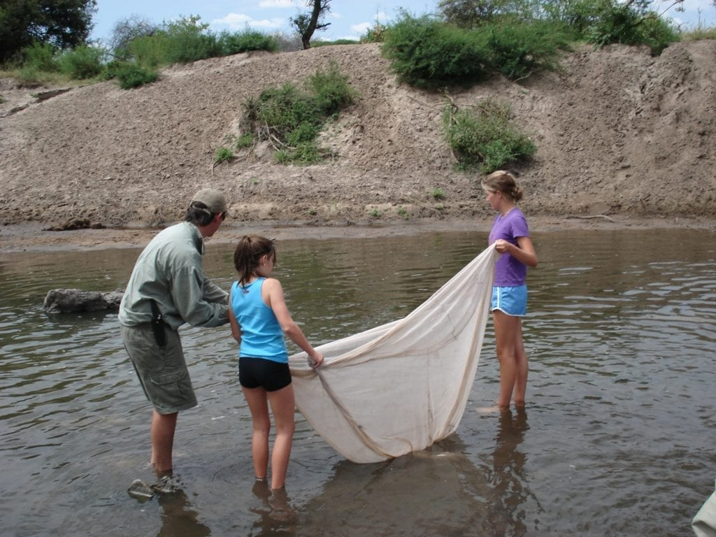 Netting river life with children on a family wildlife holiday
