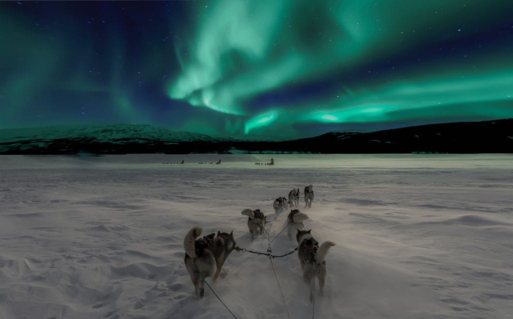 Sled pulled by huskies underneath the Northern Lights, Norway, Arctic