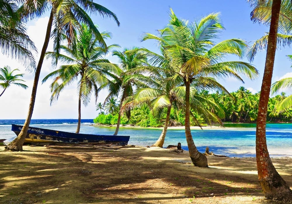 PAnama San Blas Islands and Beach Palm Trees