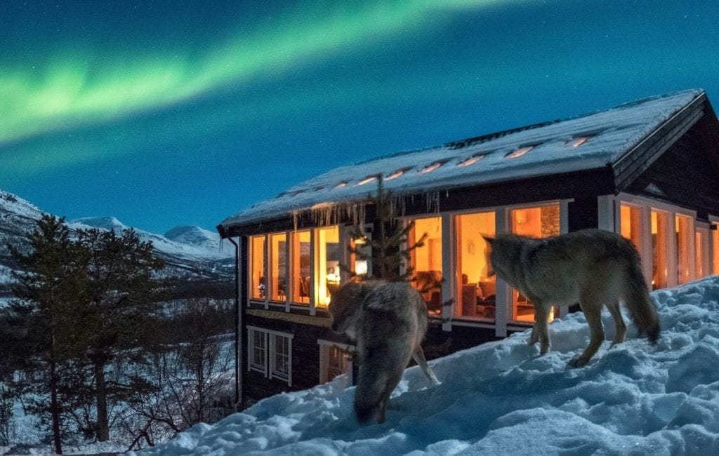 Wolf Lodge in Norway Under the Northern Lights