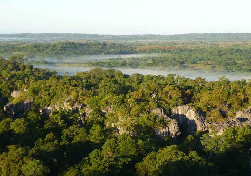 Aerial View Forest and River in Madagascar