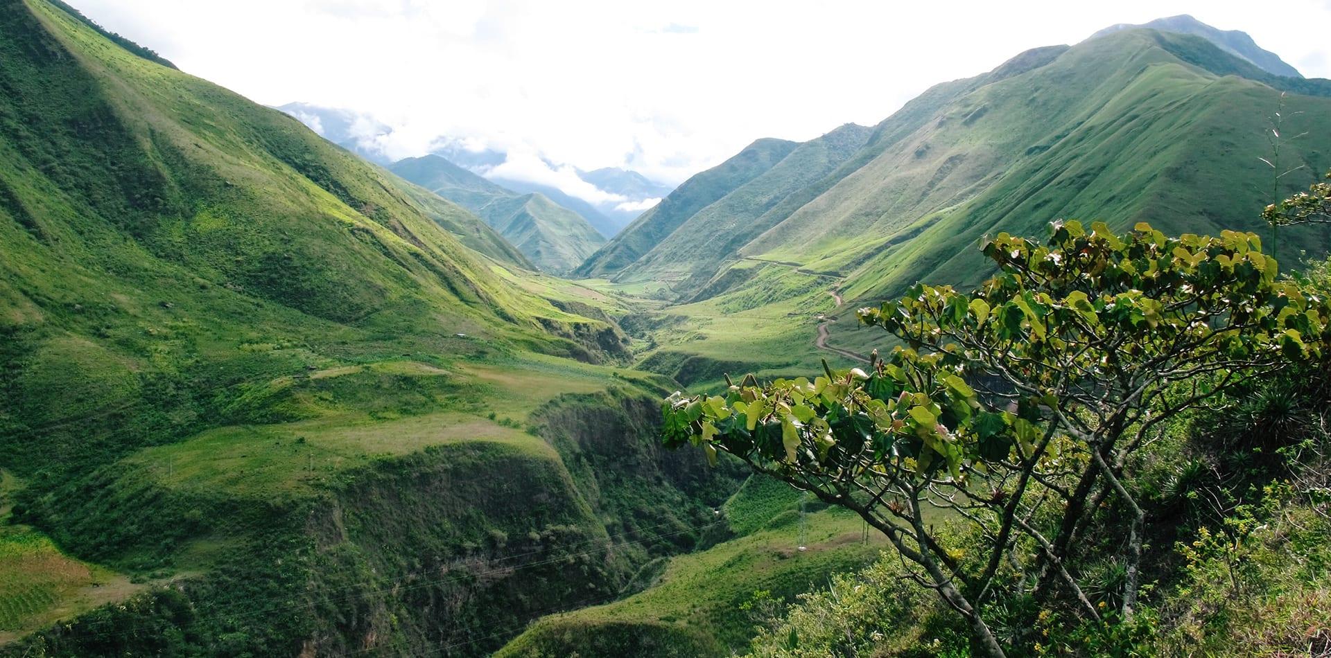 Hero Image Ecuador Forested Mountains
