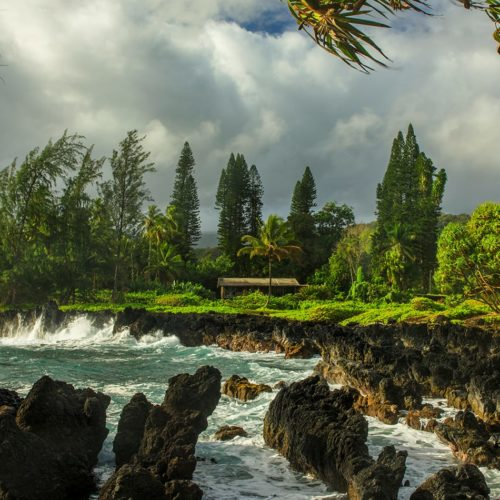 Volcanic Adventure and Island Culture in Hawaii