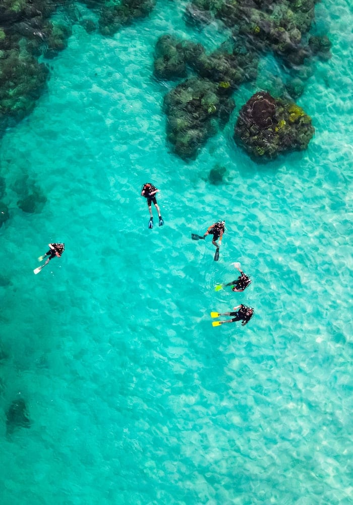 Scuba Divers in Shallow Waters, Mozambique