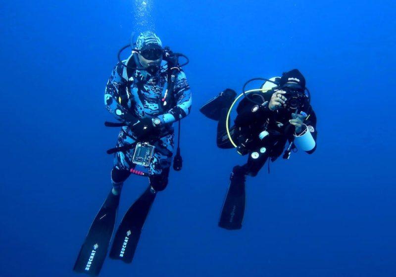 Scuba divers conducting marine research in the Bazaruto Archipelago, Mozambique