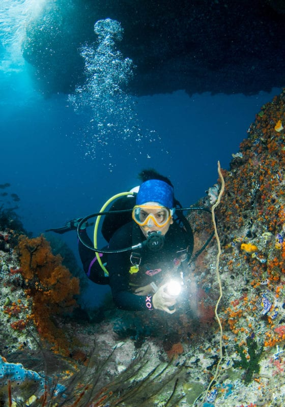 Scuba diving for marine research, Red Sea