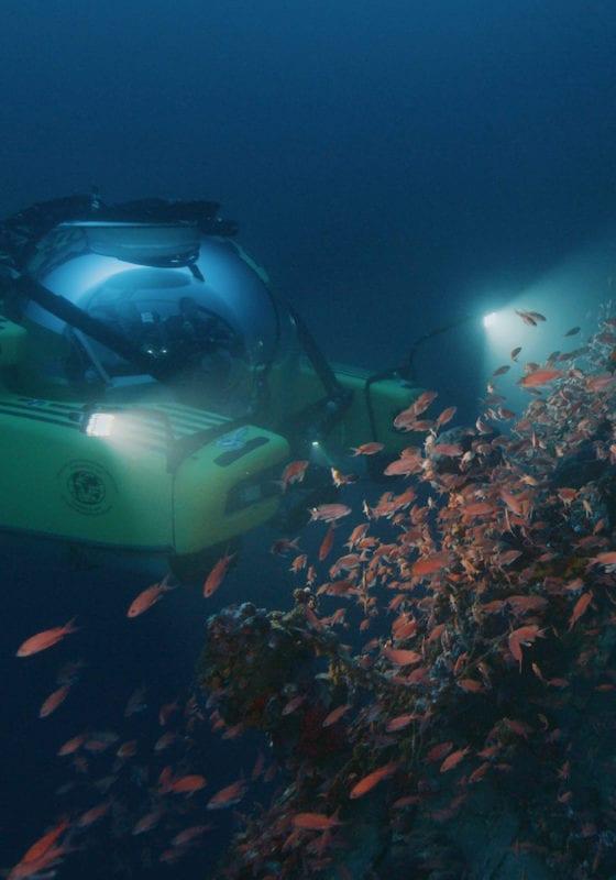 Submarine U-Boat exploring wrecks and exotic fish, Timor Leste