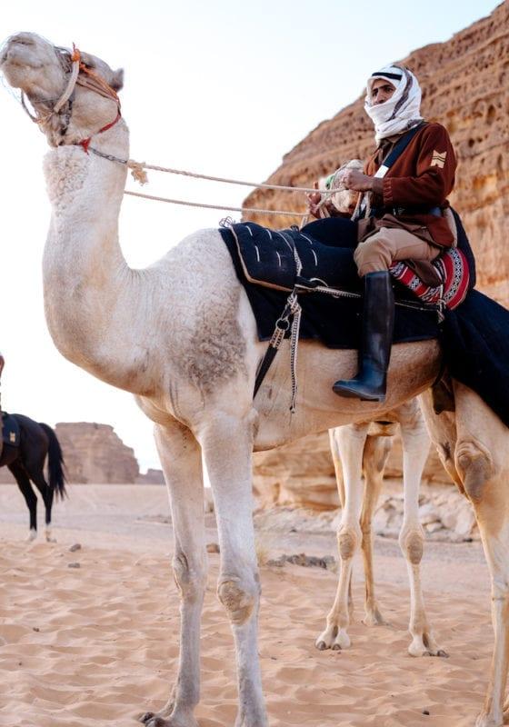 Camel Tour, Al Ula, Saudi Arabia