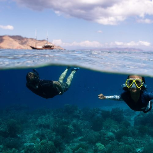 Epic Diving Experiences for Families