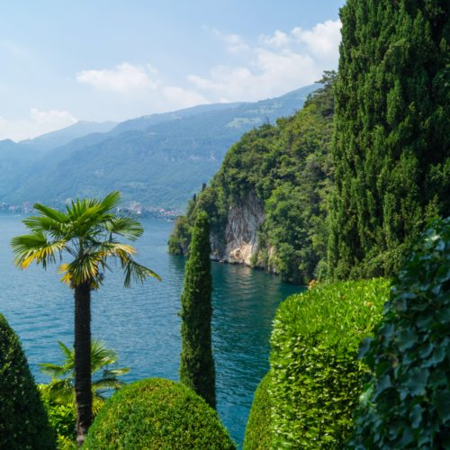 View through the trees over Italian Lake